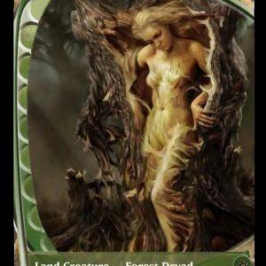 Dyrad Arbor